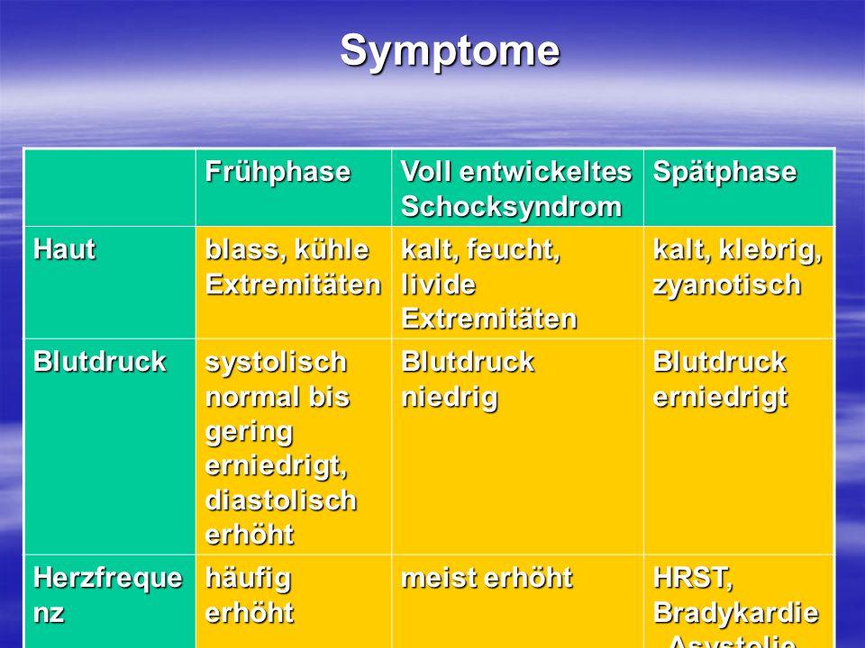 Symptome Frühphase Voll entwickeltes Schocksyndrom Spätphase Haut