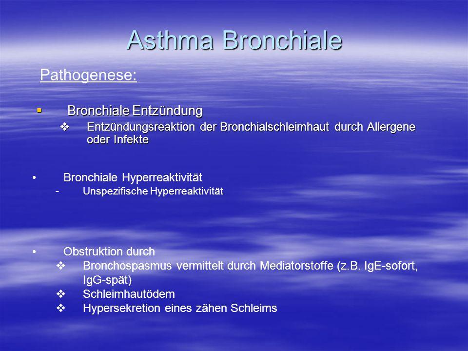 Asthma Bronchiale Pathogenese: Bronchiale Entzündung