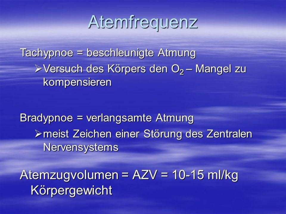Atemfrequenz Atemzugvolumen = AZV = 10-15 ml/kg Körpergewicht