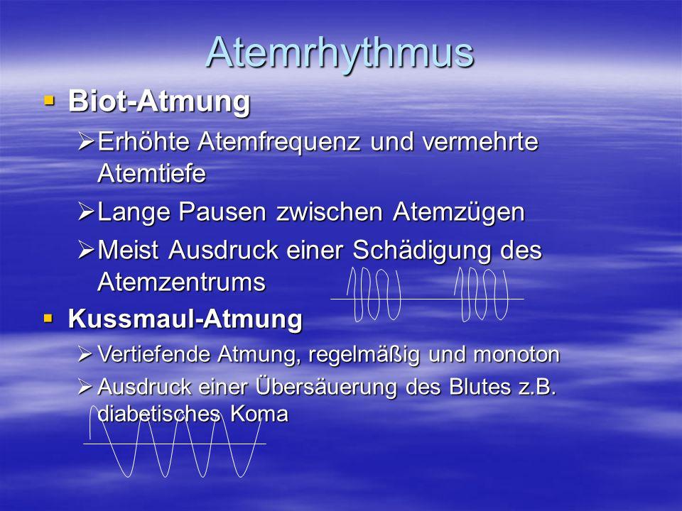 Atemrhythmus Biot-Atmung Erhöhte Atemfrequenz und vermehrte Atemtiefe