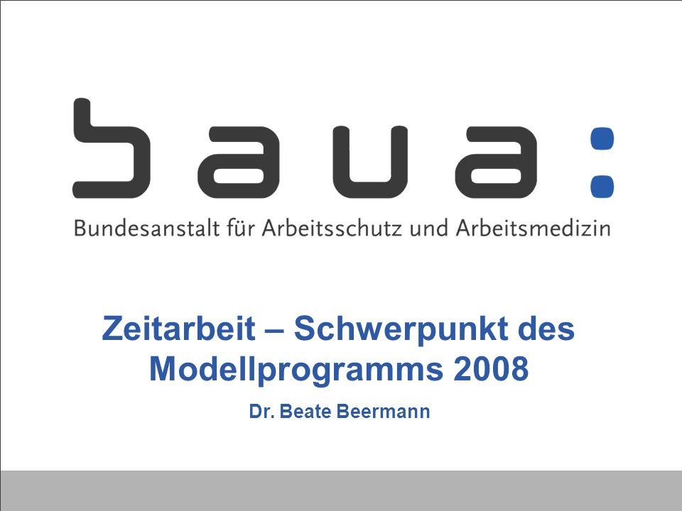 Zeitarbeit – Schwerpunkt des Modellprogramms 2008