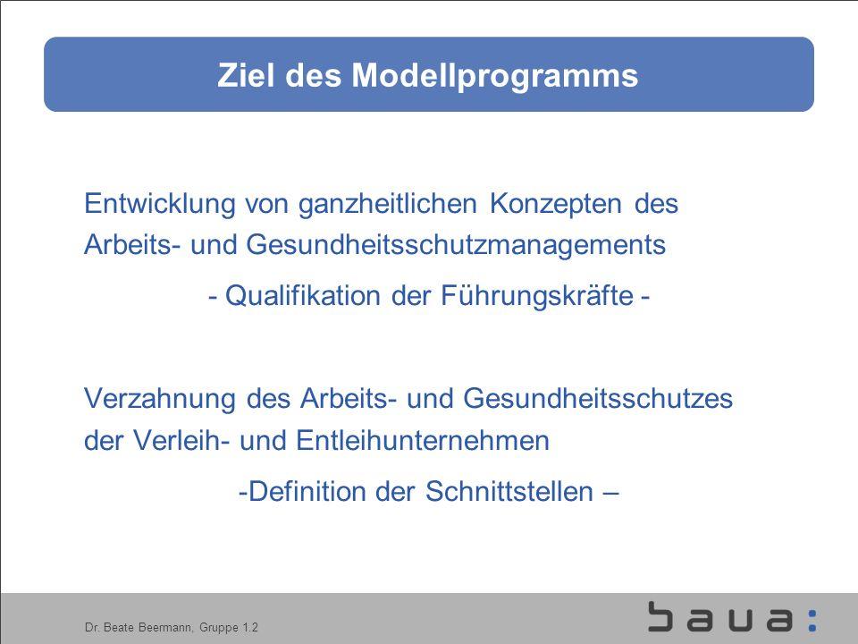 Ziel des Modellprogramms