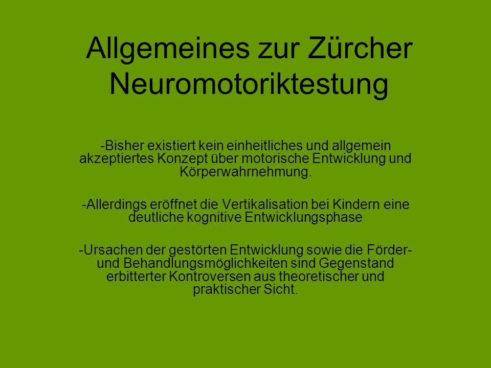 Allgemeines zur Zürcher Neuromotoriktestung