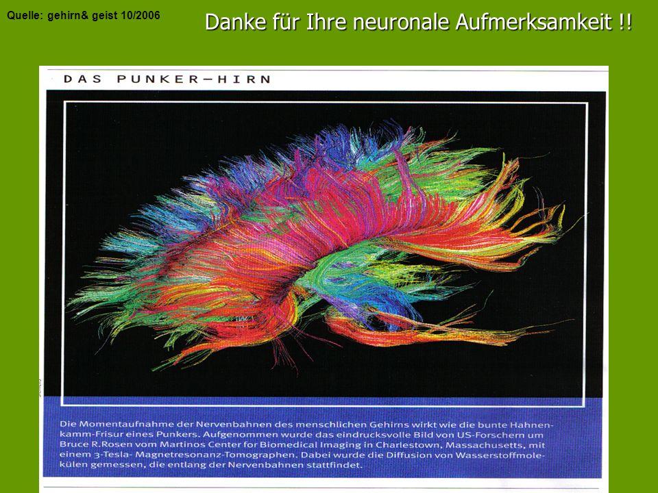 Danke für Ihre neuronale Aufmerksamkeit !!