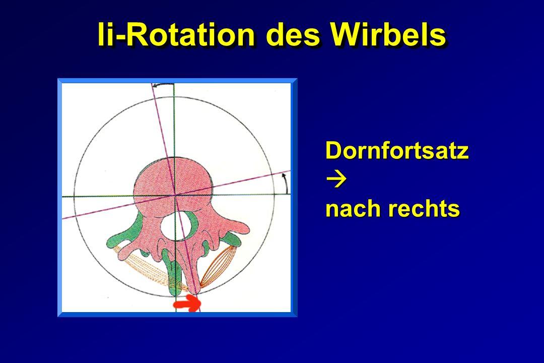 li-Rotation des Wirbels