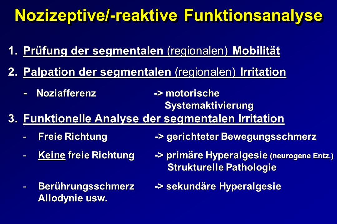 Nozizeptive/-reaktive Funktionsanalyse