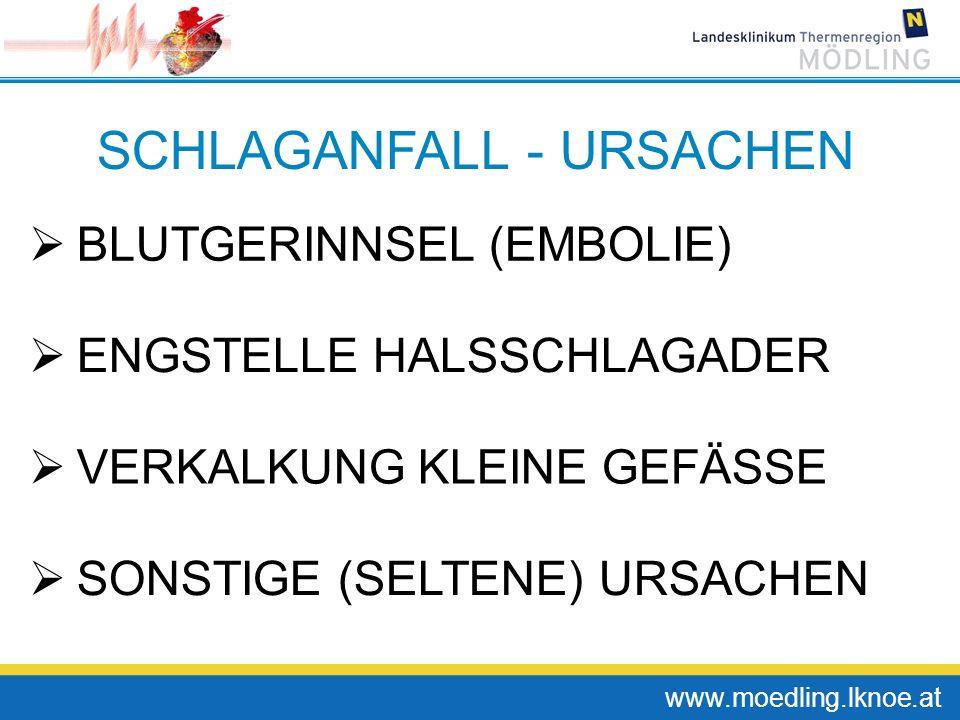 SCHLAGANFALL - URSACHEN