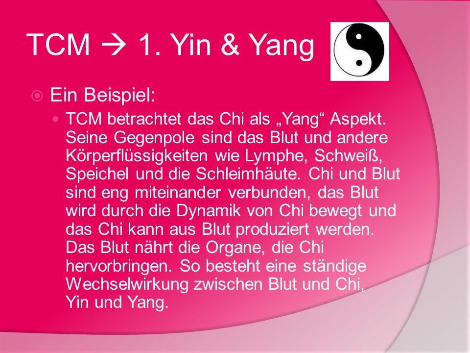 TCM  1. Yin & Yang Ein Beispiel: