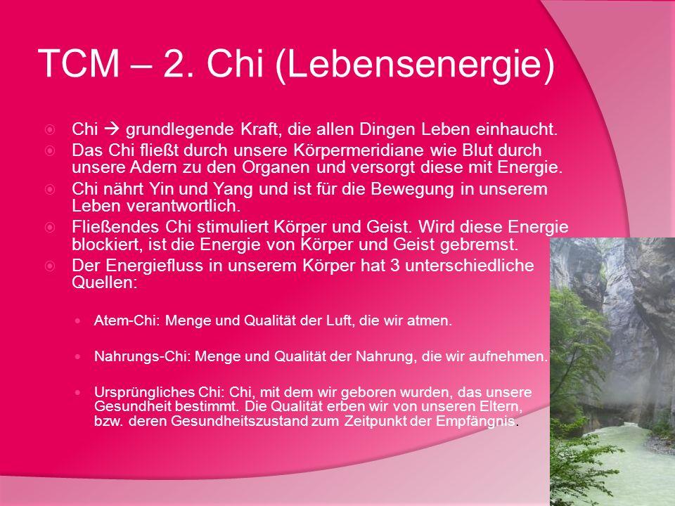 TCM – 2. Chi (Lebensenergie)