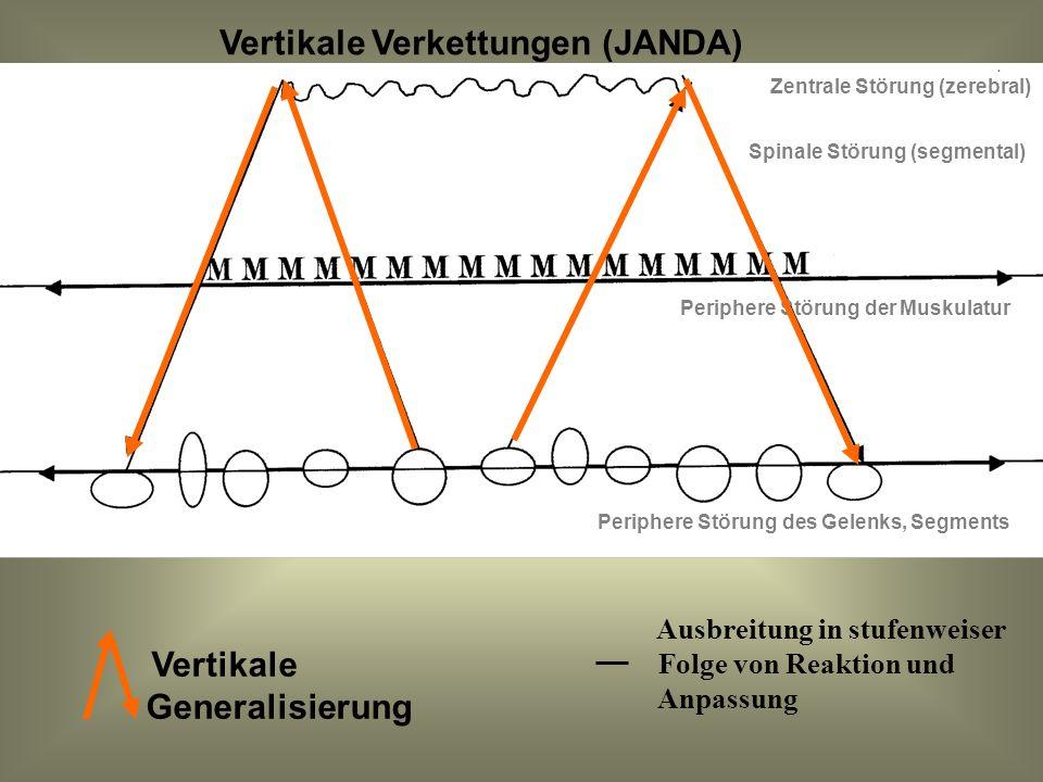Vertikale Verkettungen (JANDA)