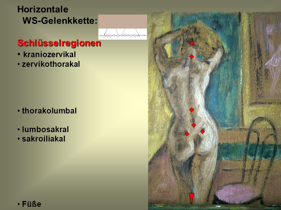 Horizontale WS-Gelenkkette: Schlüsselregionen kraniozervikal
