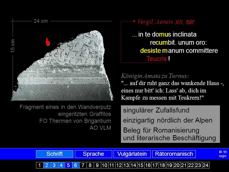 Vergilfragment  singulärer Zufallsfund einzigartig nördlich der Alpen