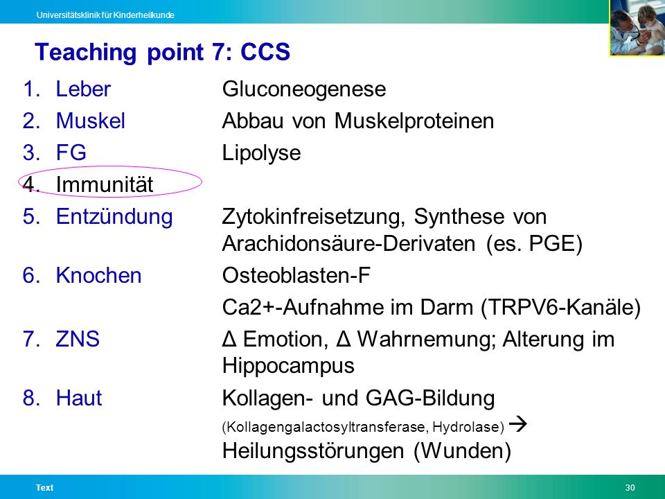 Teaching point 7: CCS Leber Gluconeogenese