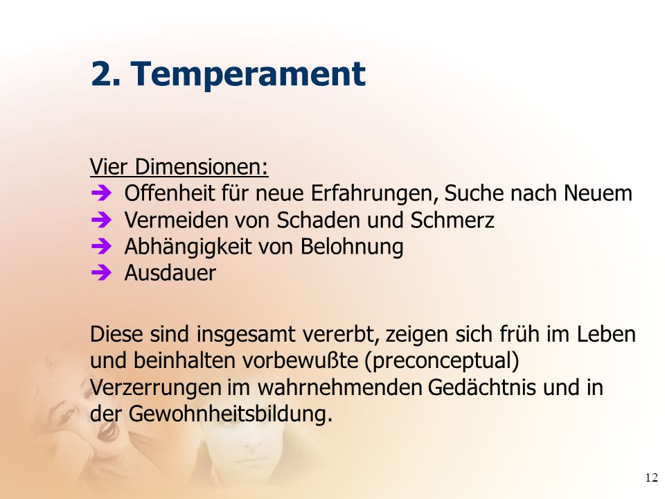 2. Temperament Vier Dimensionen: