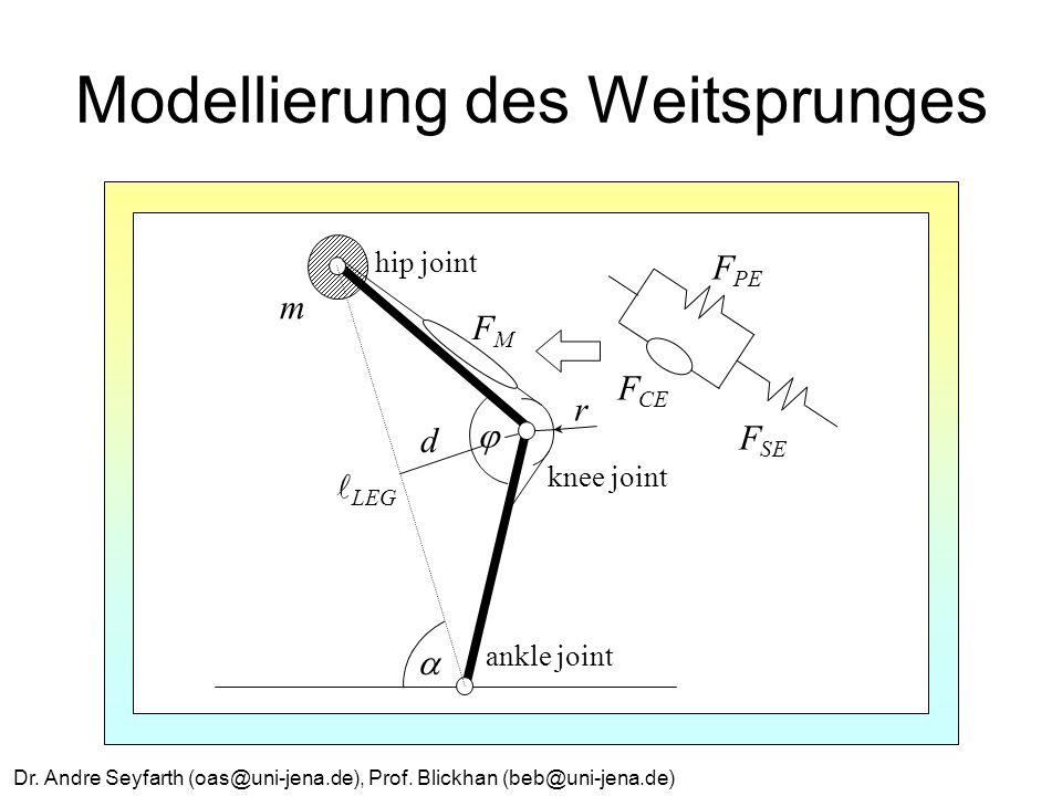 Modellierung des Weitsprunges