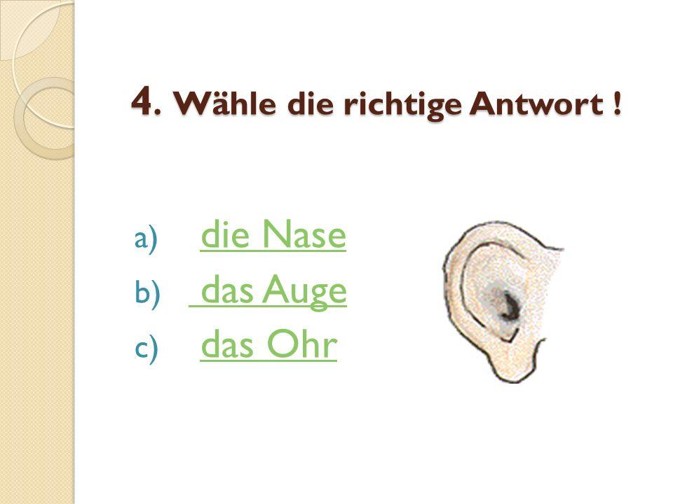 4. Wähle die richtige Antwort !