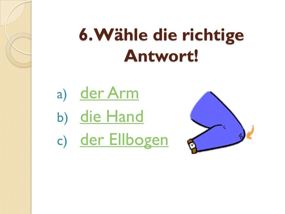 6. Wähle die richtige Antwort!