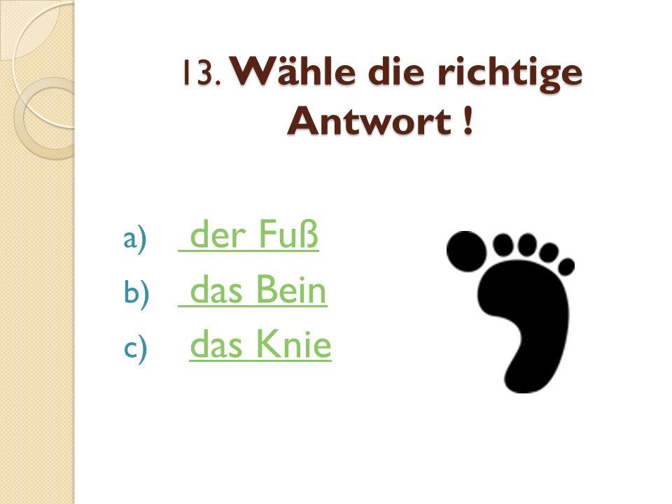 13. Wähle die richtige Antwort !
