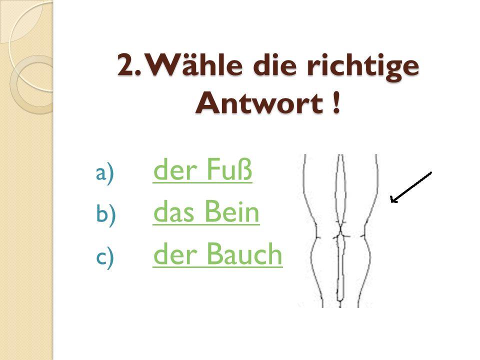 2. Wähle die richtige Antwort !