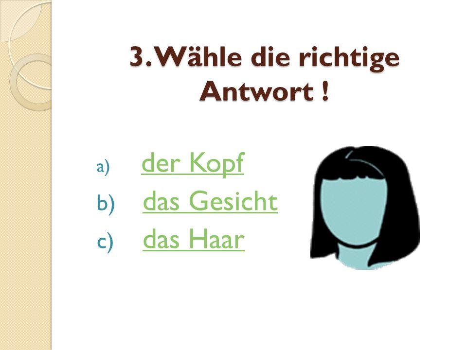 3. Wähle die richtige Antwort !