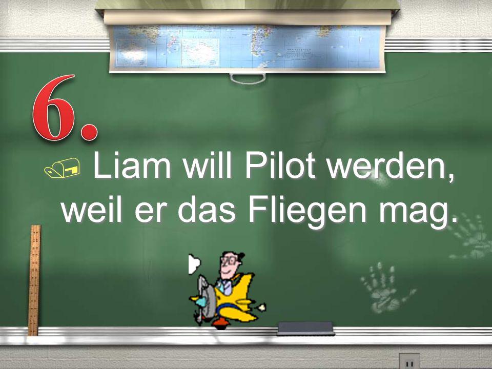 6. Liam will Pilot werden, weil er das Fliegen mag.