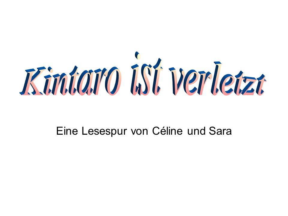 Eine Lesespur von Céline und Sara