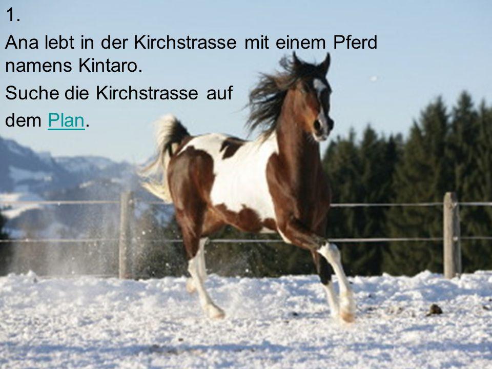1. Ana lebt in der Kirchstrasse mit einem Pferd namens Kintaro.
