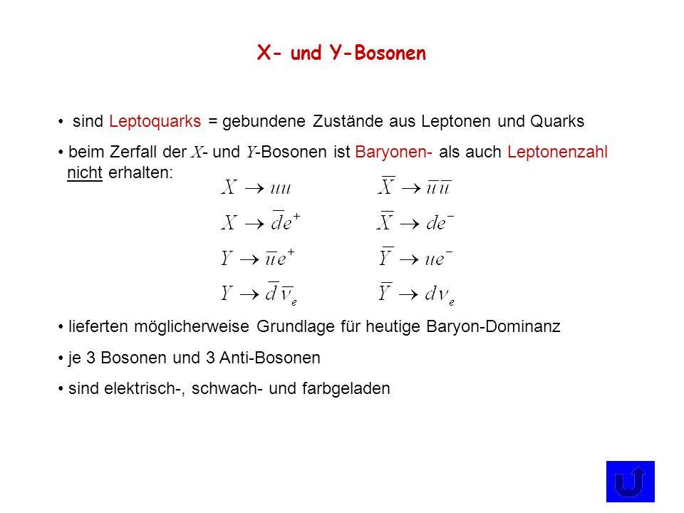 X- und Y-Bosonen sind Leptoquarks = gebundene Zustände aus Leptonen und Quarks.