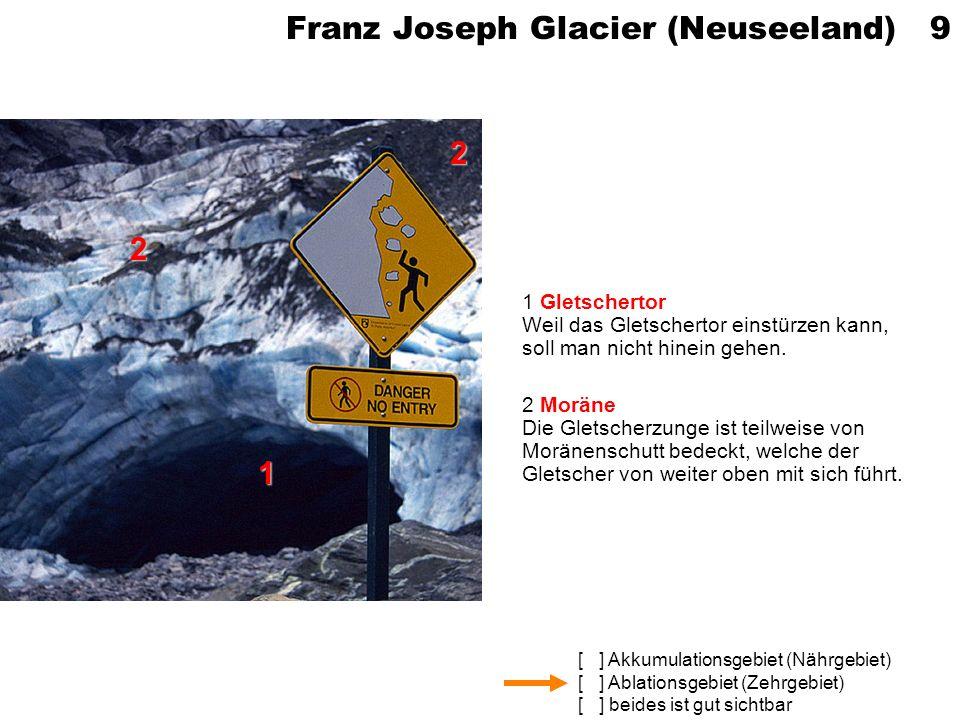 Franz Joseph Glacier (Neuseeland) 9