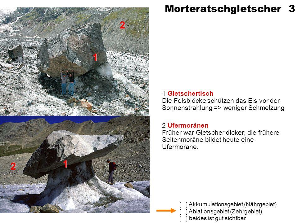 Morteratschgletscher 3