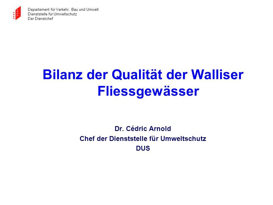 Bilanz der Qualität der Walliser Fliessgewässer