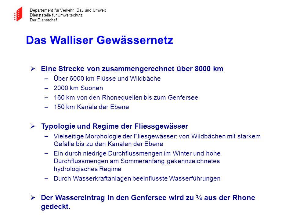 Das Walliser Gewässernetz