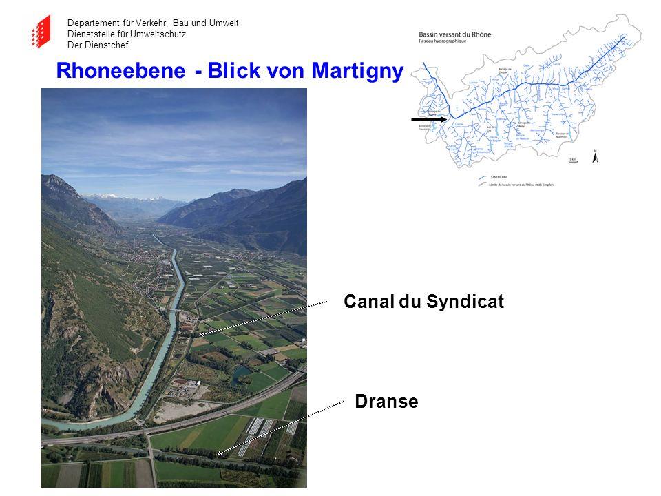 Rhoneebene - Blick von Martigny