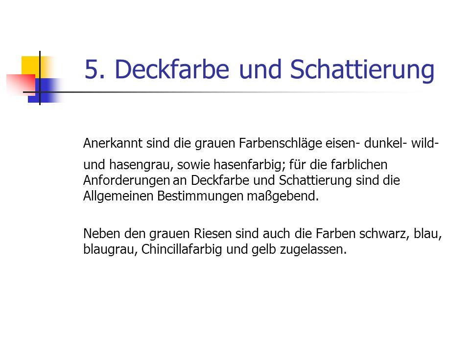 5. Deckfarbe und Schattierung