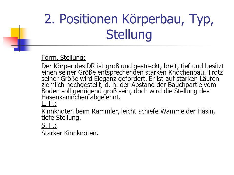 2. Positionen Körperbau, Typ, Stellung