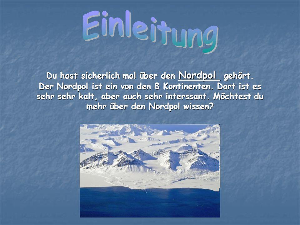 Du hast sicherlich mal über den Nordpol gehört.