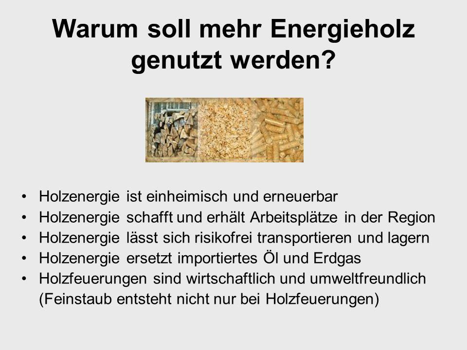 Warum soll mehr Energieholz genutzt werden