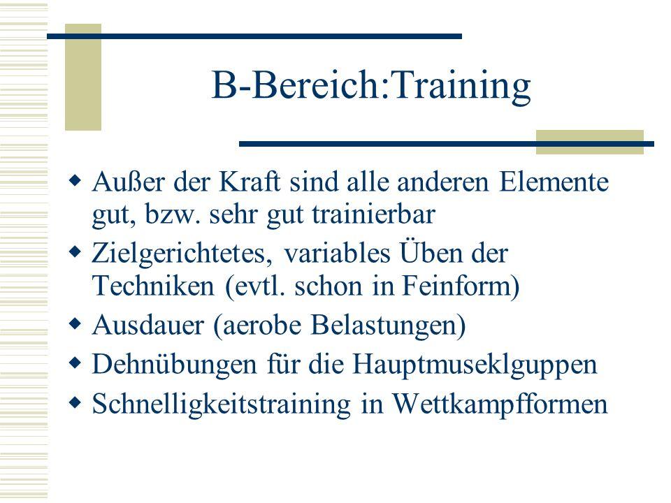B-Bereich:Training Außer der Kraft sind alle anderen Elemente gut, bzw. sehr gut trainierbar.