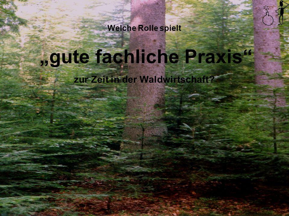 """""""gute fachliche Praxis zur Zeit in der Waldwirtschaft"""