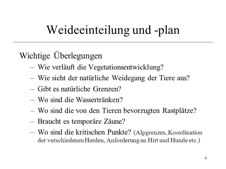 Weideeinteilung und -plan