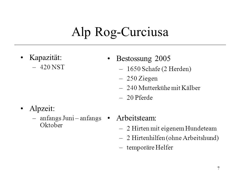 Alp Rog-Curciusa Kapazität: Alpzeit: Bestossung 2005 Arbeitsteam: