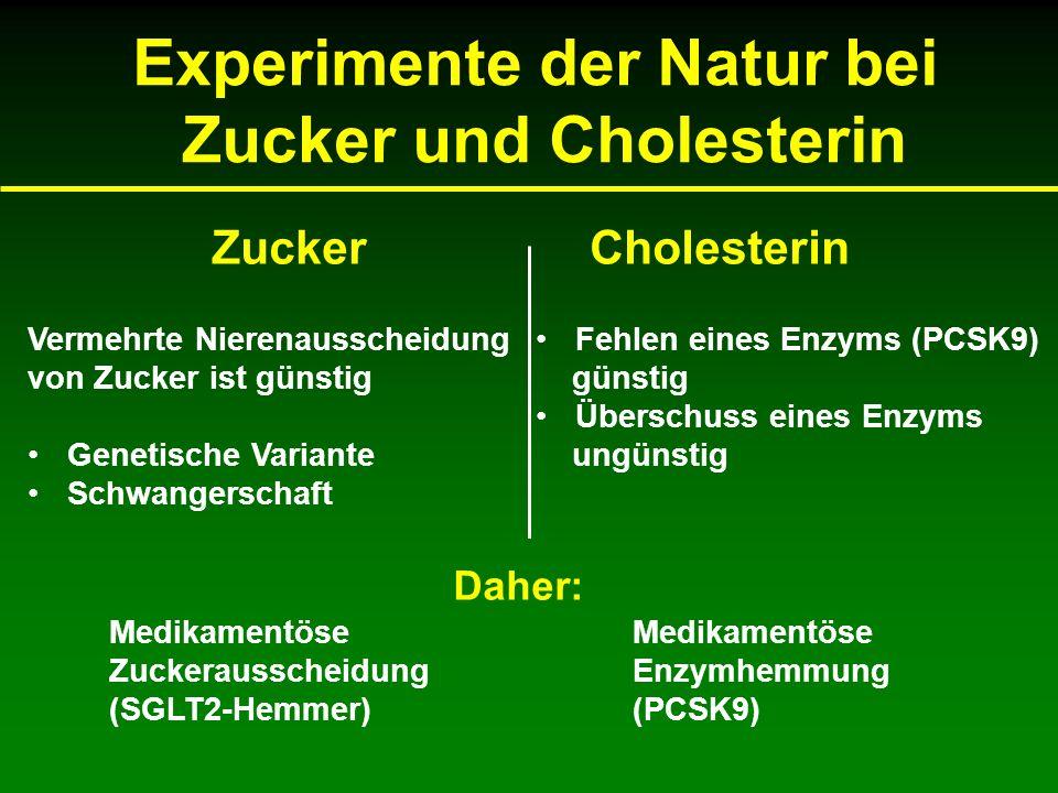 Experimente der Natur bei Zucker und Cholesterin