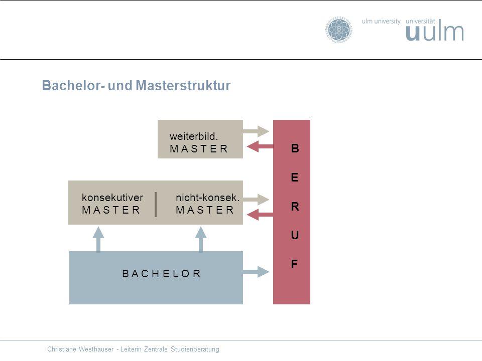 Bachelor- und Masterstruktur