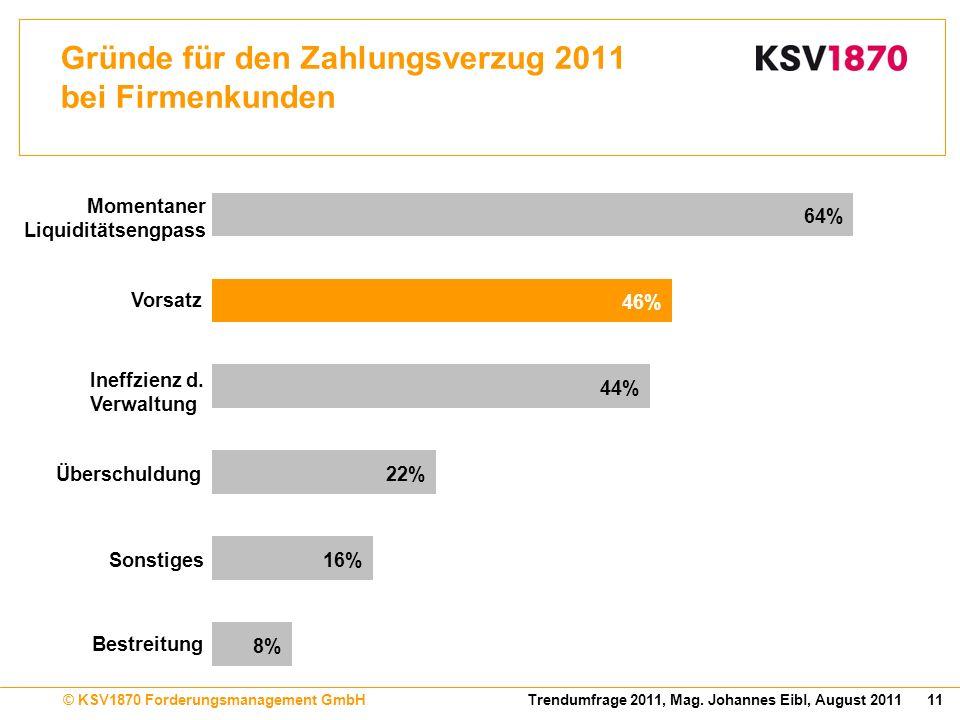 Gründe für den Zahlungsverzug 2011 bei Firmenkunden