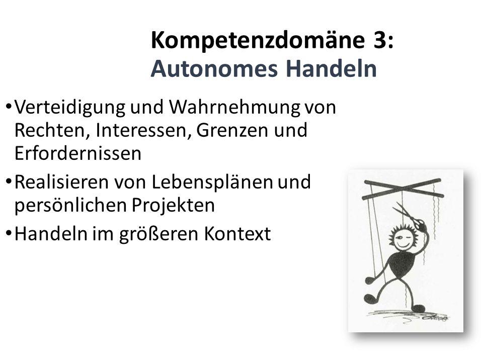 Kompetenzdomäne 3: Autonomes Handeln