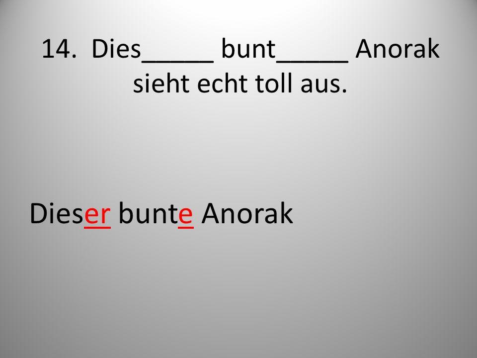 14. Dies_____ bunt_____ Anorak sieht echt toll aus.