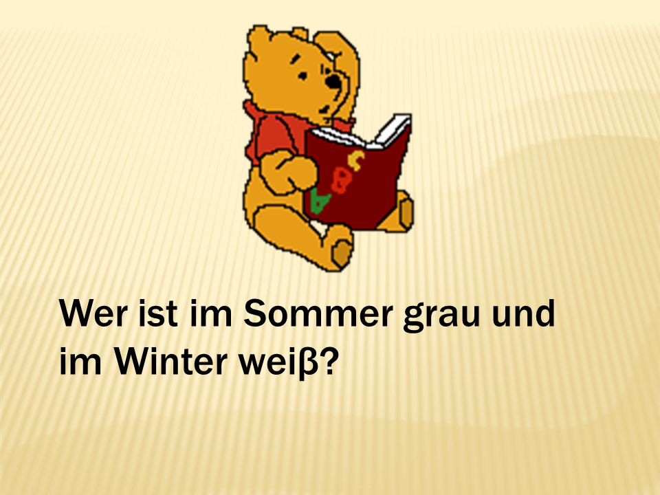 Wer ist im Sommer grau und im Winter weiβ