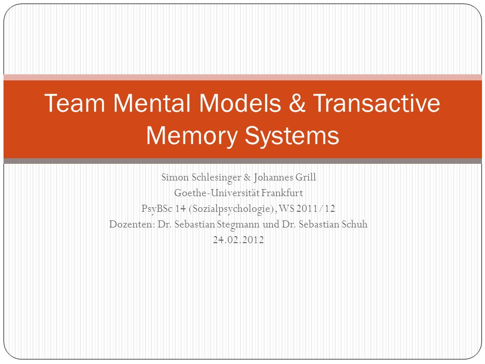 Team Mental Models & Transactive Memory Systems