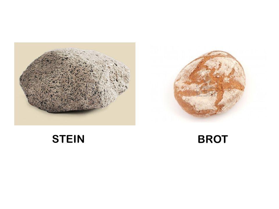STEIN BROT
