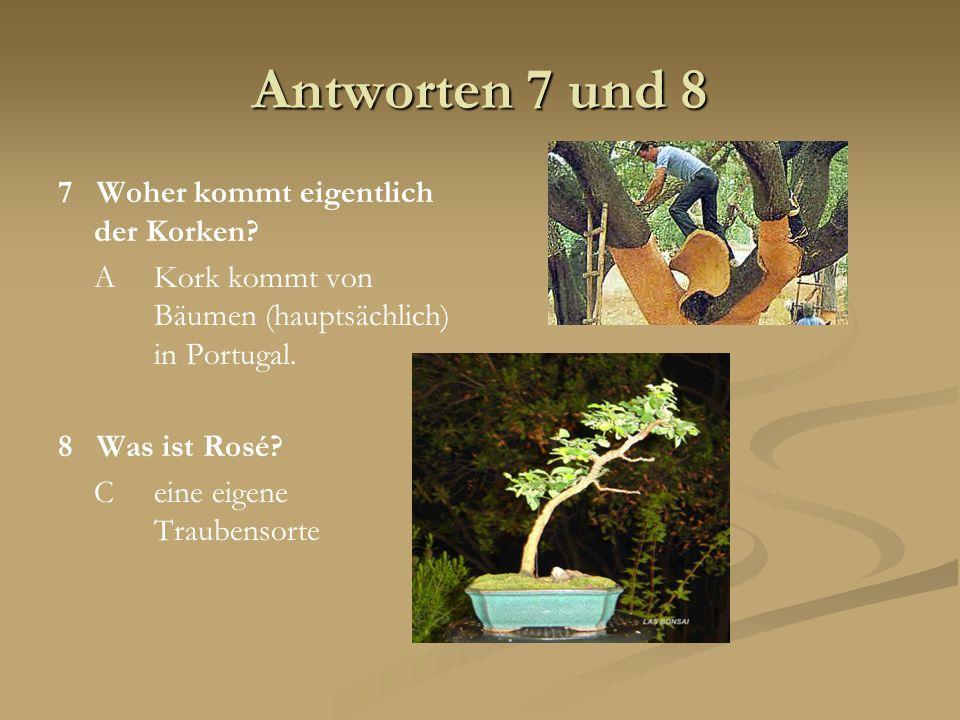 Antworten 7 und 8 7 Woher kommt eigentlich der Korken